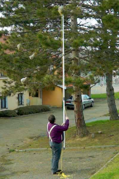 Couper et enlever un nid de chenille à la Perche téléscopique Aluminium