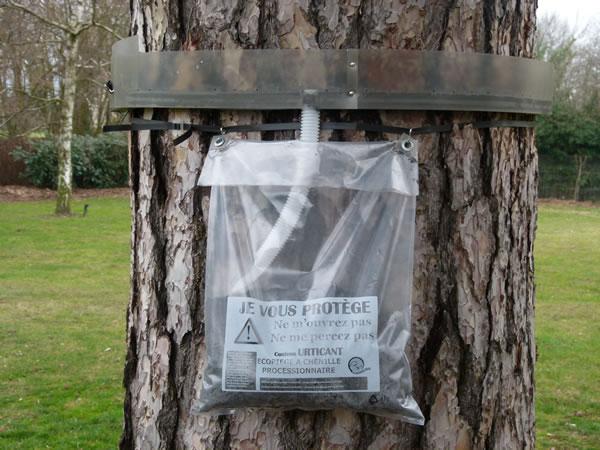 Ecopiege le collier anti chenilles processionnaires du - Eco piege chenille processionnaire ...